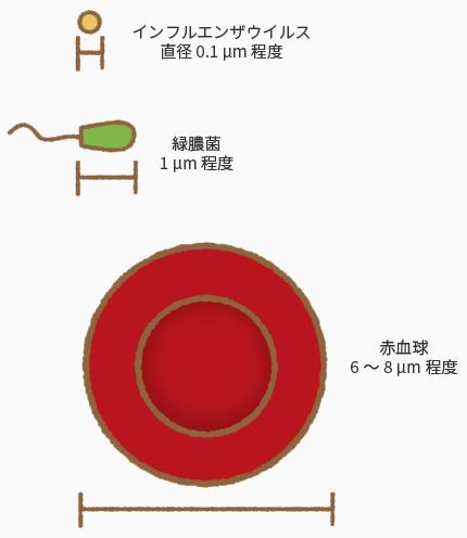 コロナ ウイルス と インフルエンザ の 違い